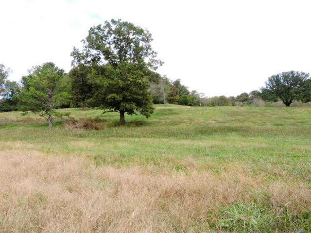 0 Murfreesboro Hwy/Noah, Wartrace, TN 37183 (MLS #2033025) :: Maples Realty and Auction Co.