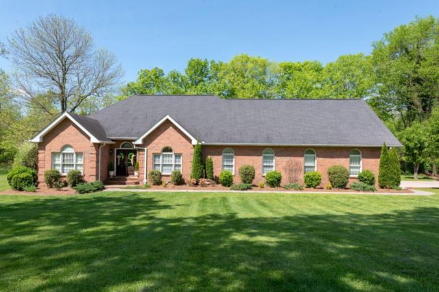 197 The Hollows Ct, Hendersonville, TN 37075 (MLS #2033874) :: RE/MAX Choice Properties