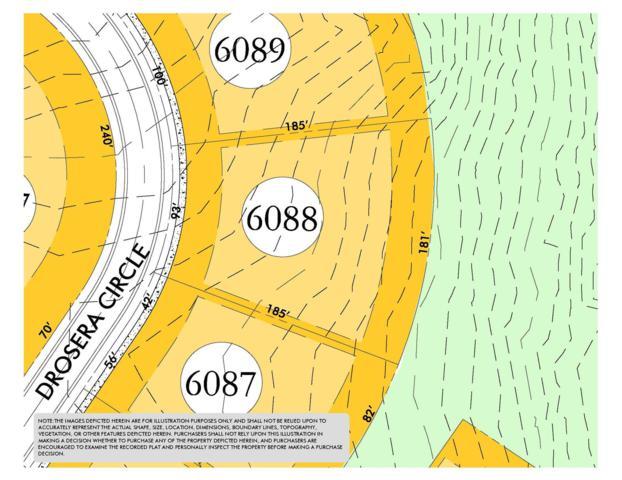 8831 Drosera Cir (Lot 6088), College Grove, TN 37046 (MLS #2034787) :: The Helton Real Estate Group
