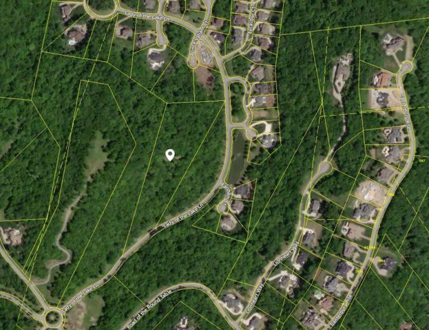 331 Lady Of The Lake Lane, Franklin, TN 37067 (MLS #RTC2035788) :: John Jones Real Estate LLC