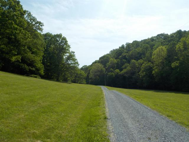 374 Sarah Ln, Lynchburg, TN 37352 (MLS #RTC2035982) :: REMAX Elite