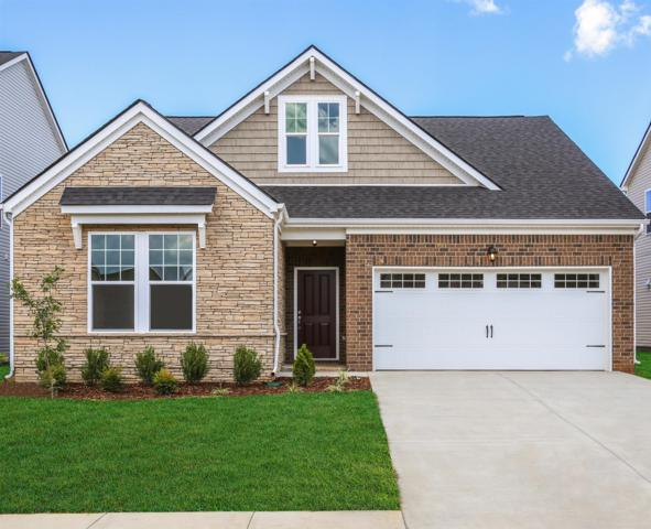 449 Nightcap Lane ( Lot 177), Murfreesboro, TN 37128 (MLS #2037150) :: The Milam Group at Fridrich & Clark Realty