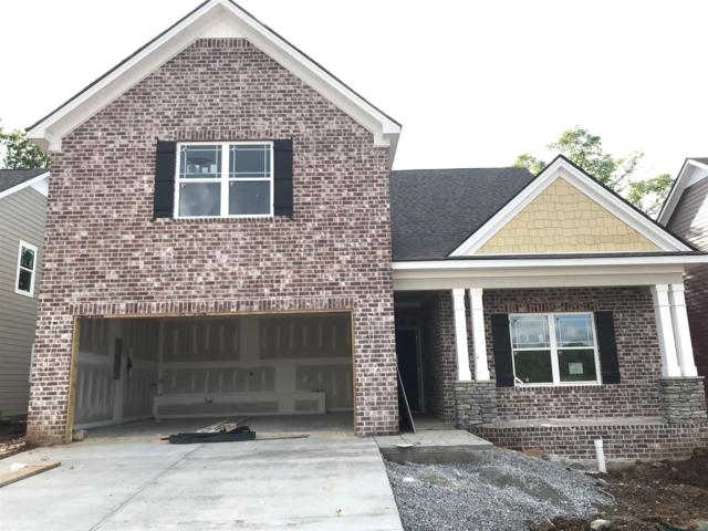 1246 Cotillion Drive (Lot 463), Murfreesboro, TN 37128 (MLS #2037625) :: Team Wilson Real Estate Partners