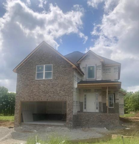 347 Brandwine Ln., Springfield, TN 37172 (MLS #2040265) :: REMAX Elite
