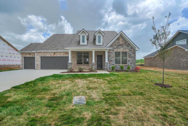 2417 Bull Rush Lane (Lot 85), Murfreesboro, TN 37128 (MLS #2040383) :: Team Wilson Real Estate Partners