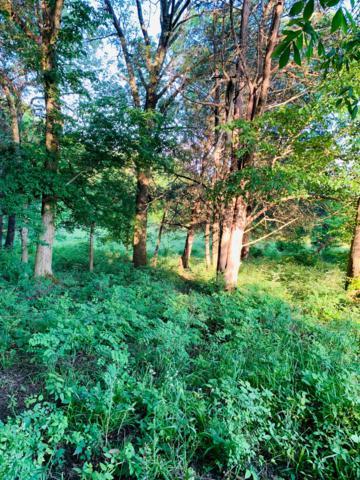 0 Harsh Lane, Castalian Springs, TN 37031 (MLS #2042653) :: Nashville's Home Hunters