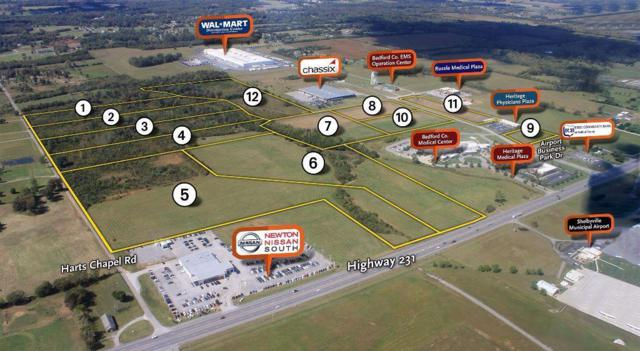 10 Airport Business Park Rd, Shelbyville, TN 37160 (MLS #2042662) :: Nashville's Home Hunters