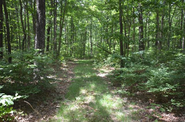 0 Valley View Drive, Altamont, TN 37301 (MLS #RTC1873936) :: Felts Partners