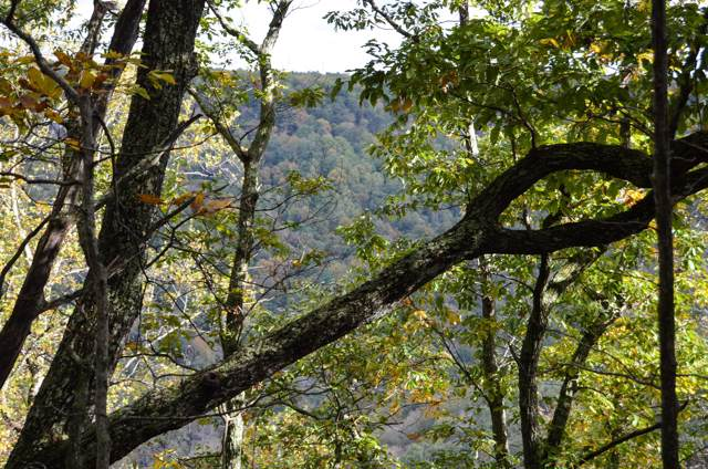 0 Woodmonte Dr, Monteagle, TN 37356 (MLS #RTC1875566) :: FYKES Realty Group