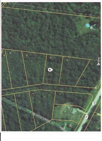 0 Robert Elliott Rd, Cedar Hill, TN 37032 (MLS #RTC1882595) :: Village Real Estate
