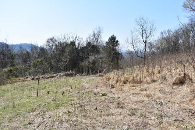 0 Sullivan Bend Rd, Elmwood, TN 38560 (MLS #RTC1903317) :: Village Real Estate