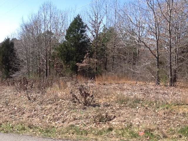 0 Hillcrest Drive, Centerville, TN 37033 (MLS #RTC1908597) :: Nashville on the Move