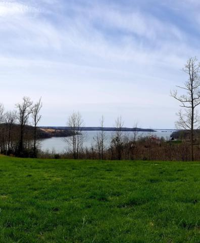12 Trace Harbor Dr, Dover, TN 37058 (MLS #RTC1918465) :: Nashville on the Move