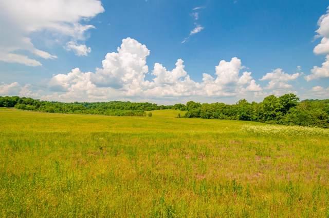 0 New Highway 7, Santa Fe, TN 38482 (MLS #RTC1921425) :: The Helton Real Estate Group