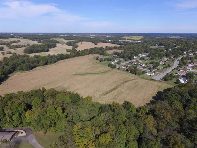 806 Crestview Drive, Springfield, TN 37172 (MLS #RTC1925474) :: Village Real Estate