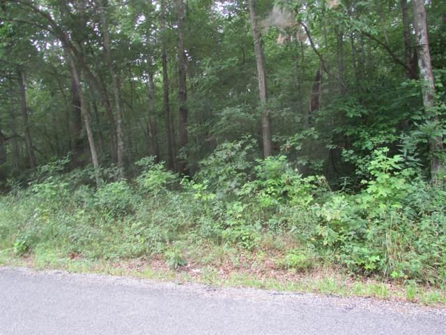 0 Deer Run Loop, Altamont, TN 37301 (MLS #RTC1955916) :: The Huffaker Group of Keller Williams