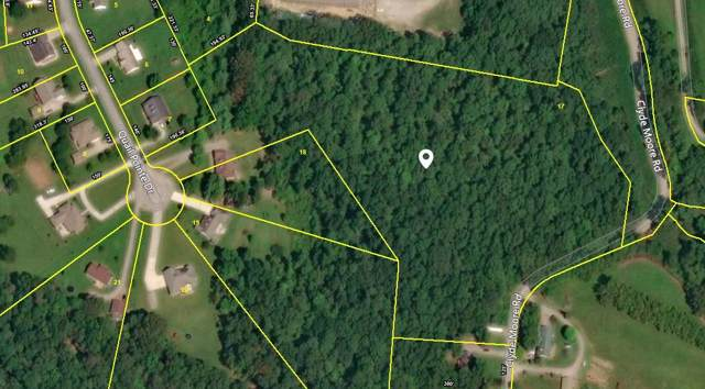 0 Quail Pointe Dr, Smithville, TN 37166 (MLS #RTC1969666) :: Stormberg Real Estate Group
