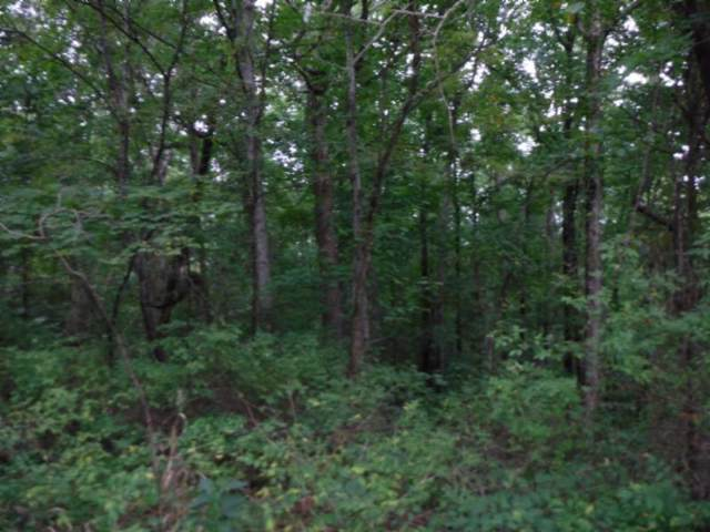 5 .30Ac Glenobey Rd, Jamestown, TN 38556 (MLS #RTC1970525) :: Team Wilson Real Estate Partners