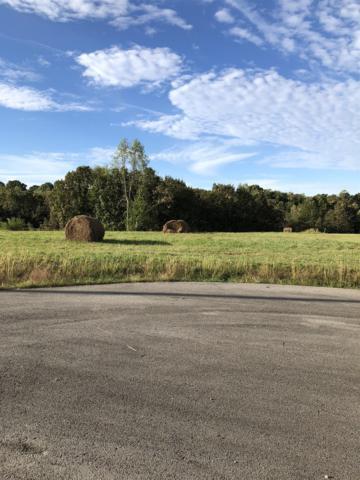 0 Loren Ln, Centerville, TN 37033 (MLS #RTC1981363) :: Five Doors Network