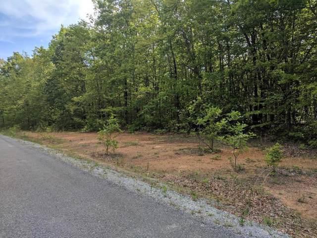 0 Deer Run Rd Lot 242, Altamont, TN 37301 (MLS #RTC1985012) :: The Huffaker Group of Keller Williams