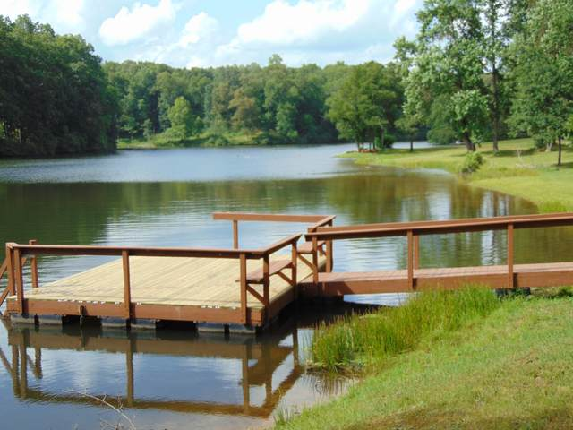 0 Pine Lake Rd, Summertown, TN 38483 (MLS #RTC1985356) :: PARKS