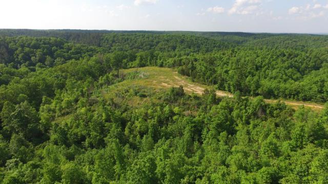 0 Swan Creek Rd, Centerville, TN 37033 (MLS #RTC1988028) :: Village Real Estate
