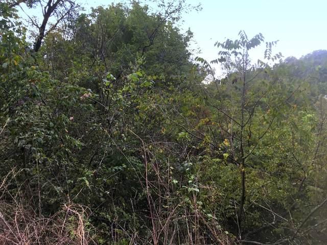 0 Joy Rd, Mount Pleasant, TN 38474 (MLS #RTC1988499) :: Village Real Estate