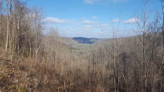 482 Oak Dr, Smithville, TN 37166 (MLS #RTC2006249) :: DeSelms Real Estate