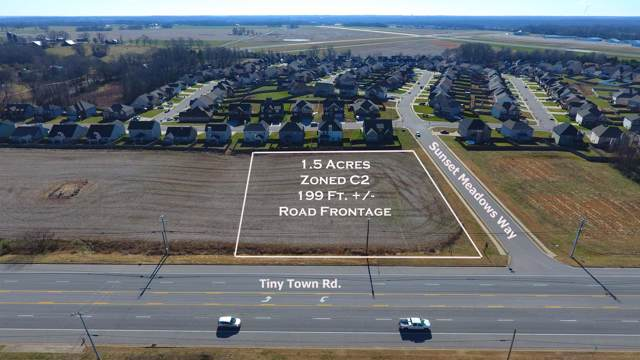 3 Tiny Town Rd, Clarksville, TN 37042 (MLS #RTC2006813) :: Team Wilson Real Estate Partners