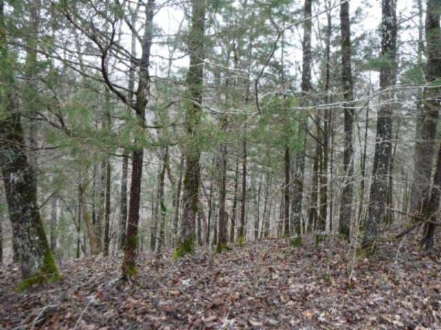 5 Backwoods Trails Lane, Celina, TN 38551 (MLS #RTC2013327) :: The Group Campbell powered by Five Doors Network