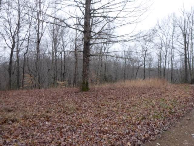 9 Backwoods Trails Lane, Celina, TN 38551 (MLS #RTC2013337) :: The Group Campbell powered by Five Doors Network