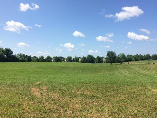 0 Hwy 41A/Hicks Edgin Road, Pleasant View, TN 37146 (MLS #RTC2015580) :: Christian Black Team