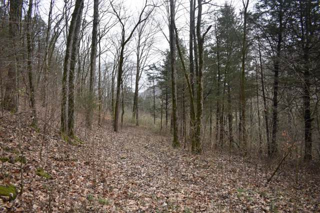 0 Sycamore Valley Rd, Lafayette, TN 37083 (MLS #RTC2018057) :: Nashville on the Move
