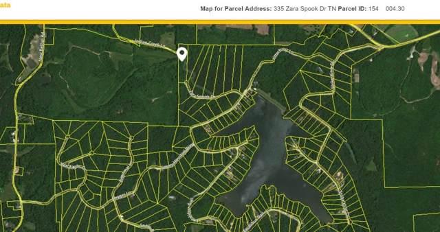 335 Zara Spook Dr, Cedar Grove, TN 38321 (MLS #RTC2021435) :: EXIT Realty Bob Lamb & Associates