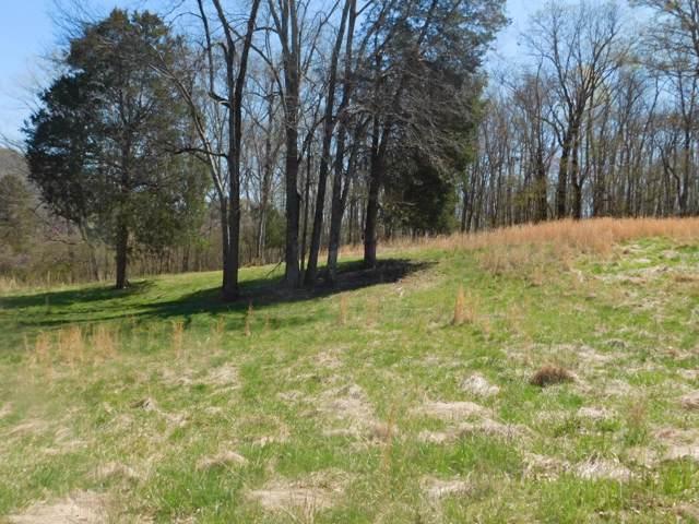 0 Scenic Cir, Pulaski, TN 38478 (MLS #RTC2027684) :: Village Real Estate