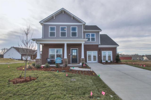 545 Oakvale Lane- Lot 166, Mount Juliet, TN 37122 (MLS #RTC2028697) :: John Jones Real Estate LLC