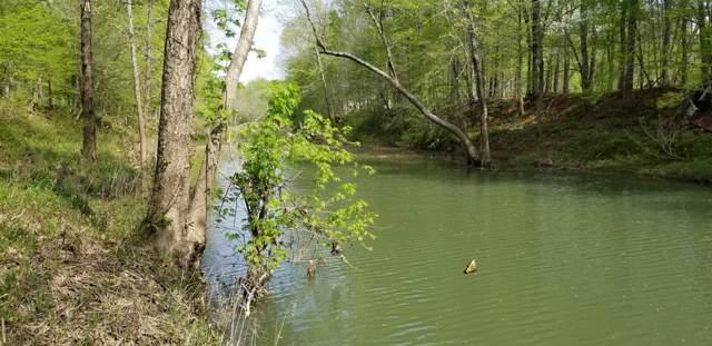 0 Buffalo River E Of  13 Hwy, Lobelville, TN 37097 (MLS #RTC2031298) :: REMAX Elite