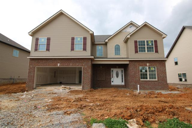 210 The Groves At Hearthstone, Clarksville, TN 37040 (MLS #RTC2032026) :: FYKES Realty Group