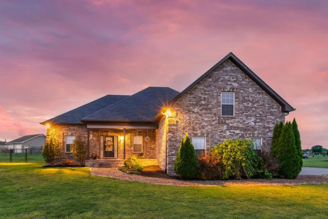 1013 Meridian Dr, Castalian Springs, TN 37031 (MLS #RTC2034751) :: RE/MAX Choice Properties