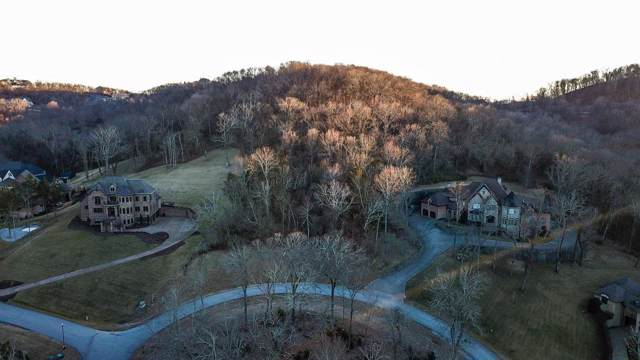 391 Lady Of The Lake Lane, Franklin, TN 37067 (MLS #RTC2035340) :: Team Wilson Real Estate Partners