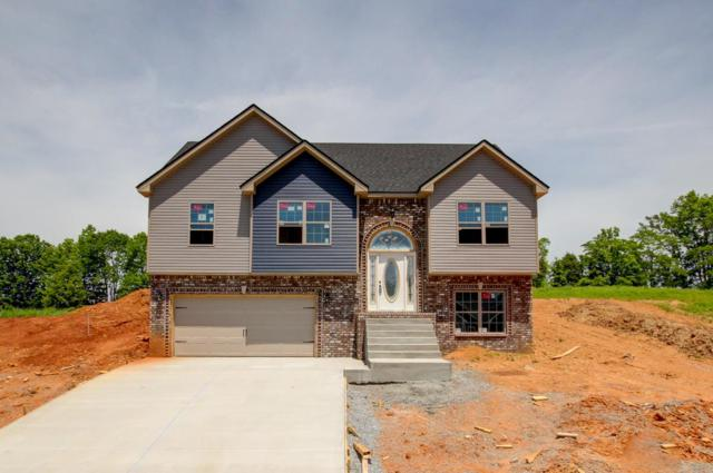 5 Rich Ellen Ridge, Palmyra, TN 37142 (MLS #RTC2039251) :: Christian Black Team