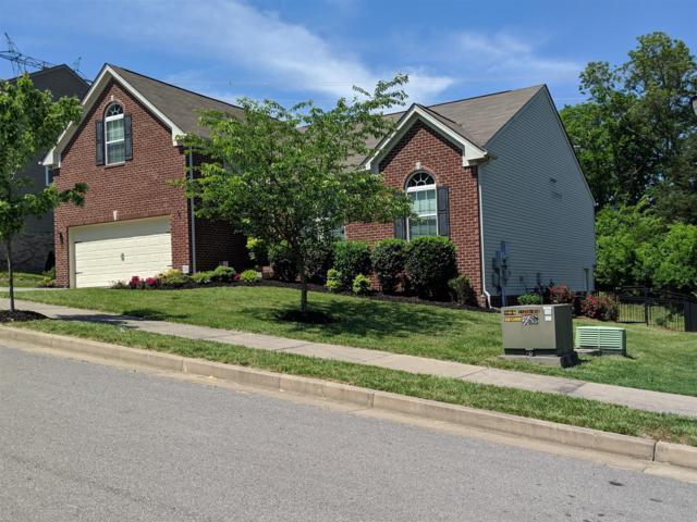 908 Holgate Ct, Nashville, TN 37221 (MLS #RTC2040732) :: Armstrong Real Estate