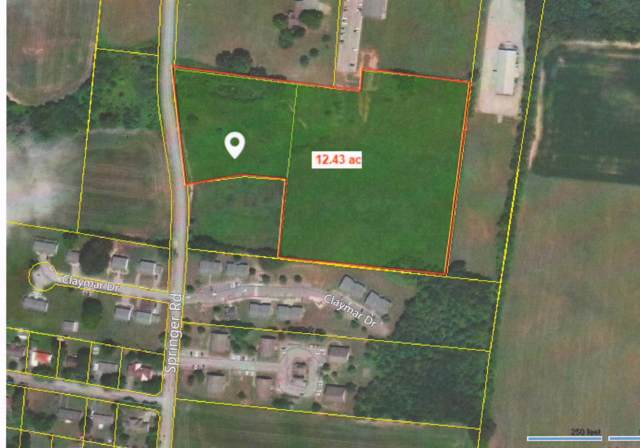 0 Springer Rd, Lawrenceburg, TN 38464 (MLS #RTC2041009) :: CityLiving Group