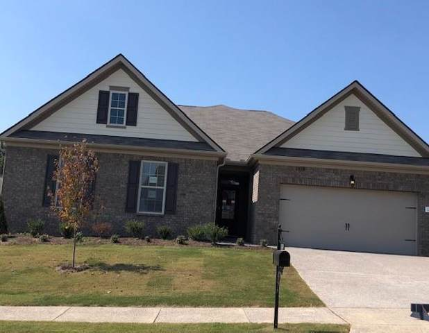 1314 Sylvan Park, Lot 343, Spring Hill, TN 37174 (MLS #RTC2042202) :: REMAX Elite