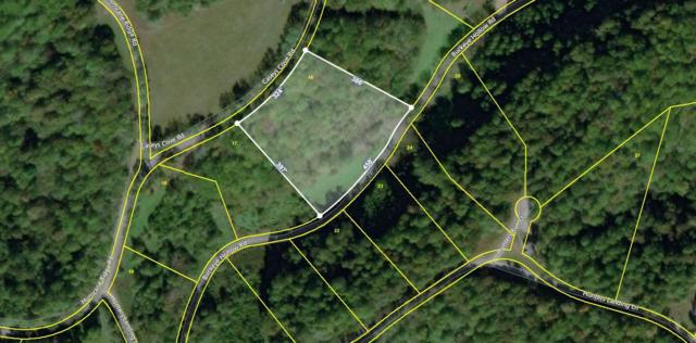 0 Buckeye Hollow Rd Lot 16, Smithville, TN 37166 (MLS #RTC2042581) :: REMAX Elite