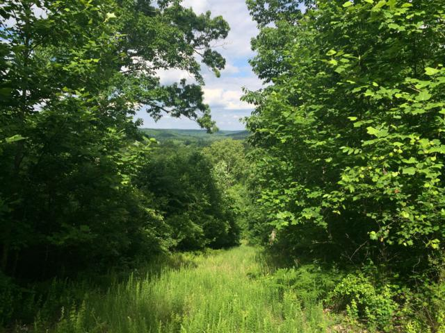 0 Bunches Chapel Rd, Parsons, TN 38363 (MLS #RTC2043028) :: RE/MAX Choice Properties