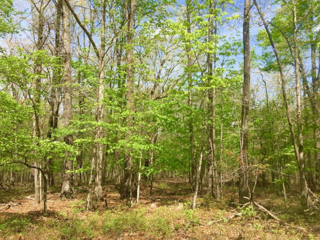 6 Laurel Lake Dr, Monteagle, TN 37356 (MLS #RTC2043150) :: Village Real Estate