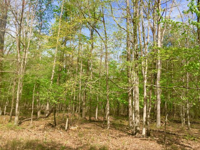 1 Chickory Ln, Monteagle, TN 37356 (MLS #RTC2043172) :: Village Real Estate