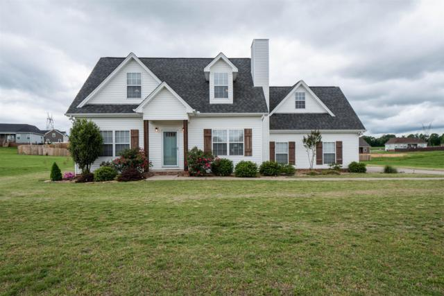 1143 Leaf Ln, Ashland City, TN 37015 (MLS #RTC2043390) :: Fridrich & Clark Realty, LLC
