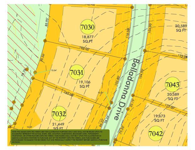 8625 Belladonna Dr (Lot 7030), College Grove, TN 37046 (MLS #RTC2044979) :: REMAX Elite